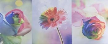 Alana Flowers