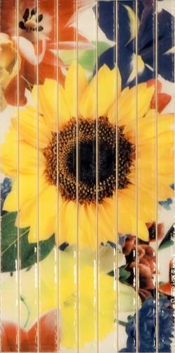 Cuba Sunflower