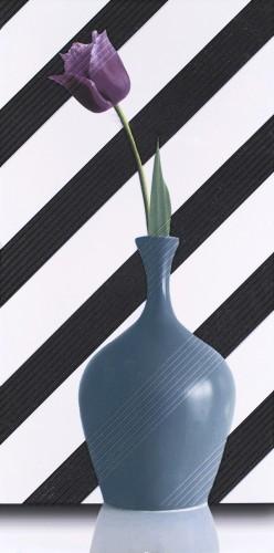 Geometry Diagonal Tulip