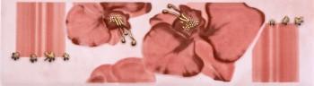 Goya Orchid PN