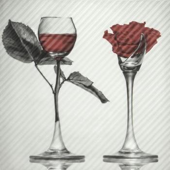 Spain Rose