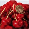Orly Cherry W
