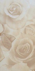 Travertine Rose BC