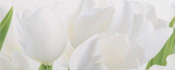 Tulip 1 W