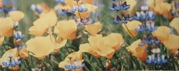 Yalta Flower YL